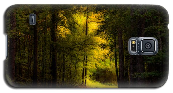 Beauty In The Forest Galaxy S5 Case