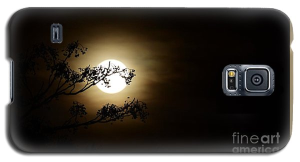 Beauty Is Life Galaxy S5 Case by Angela J Wright