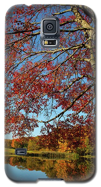 Galaxy S5 Case featuring the photograph Beauty Of Fall by Karol Livote