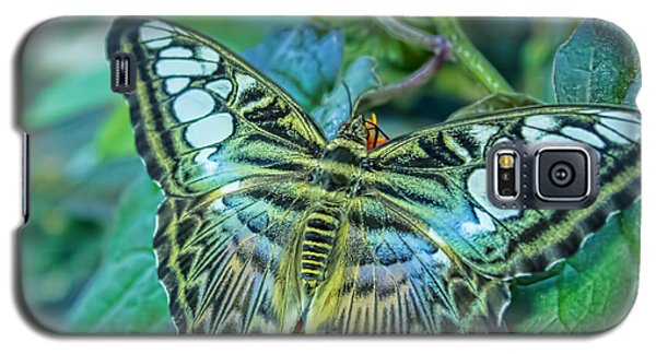 Beauty On Wings Galaxy S5 Case
