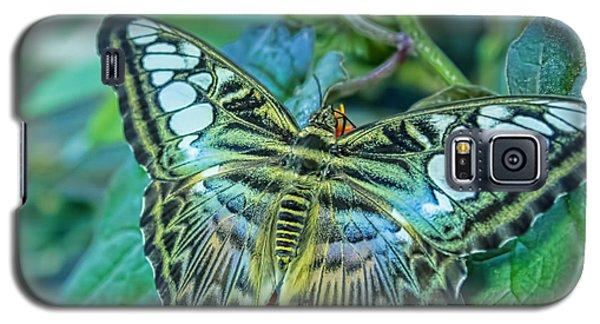 Beauty On Wings Galaxy S5 Case by Steven Parker
