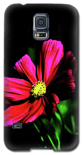 Galaxy S5 Case featuring the photograph Beauty  by Tom Prendergast