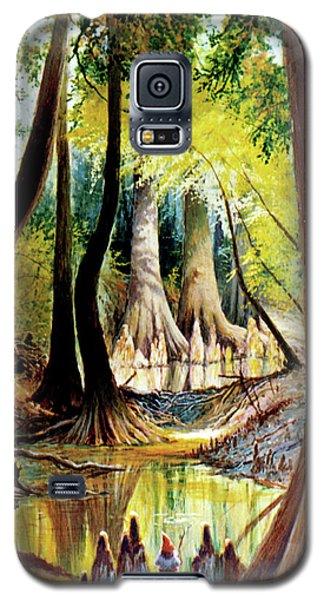 Beaver Dam On Village Creek Galaxy S5 Case