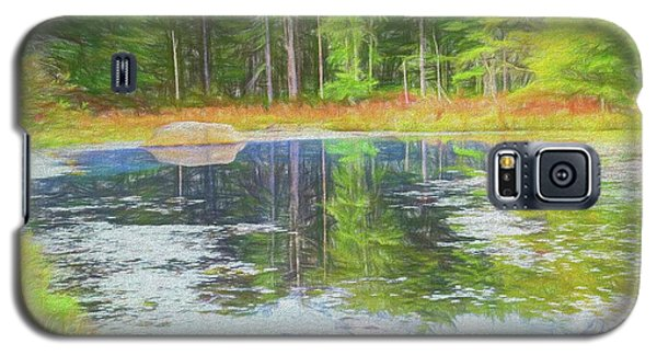 Beaver Pond Reflections Galaxy S5 Case