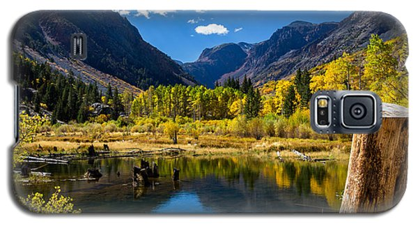 Beaver Pond Galaxy S5 Case