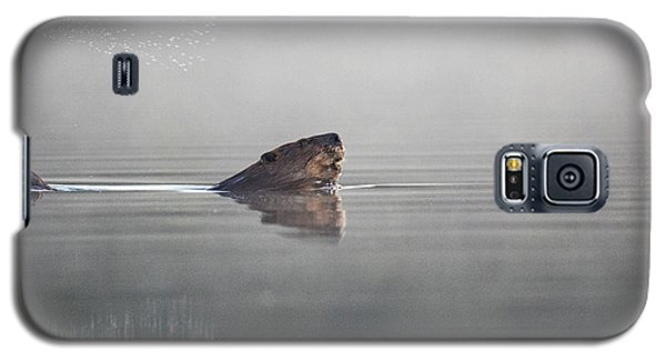 Beaver Tail Galaxy S5 Case