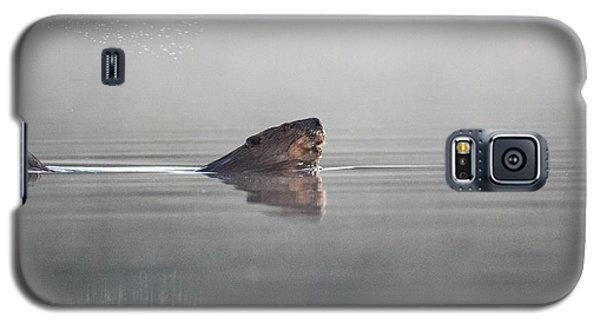 Beaver Tail Galaxy S5 Case
