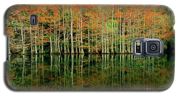 Beaver's Bend Cypress All In A Row Galaxy S5 Case by Tamyra Ayles