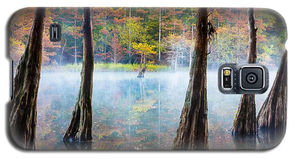 Beavers Bend Cypress Grove Galaxy S5 Case by Inge Johnsson