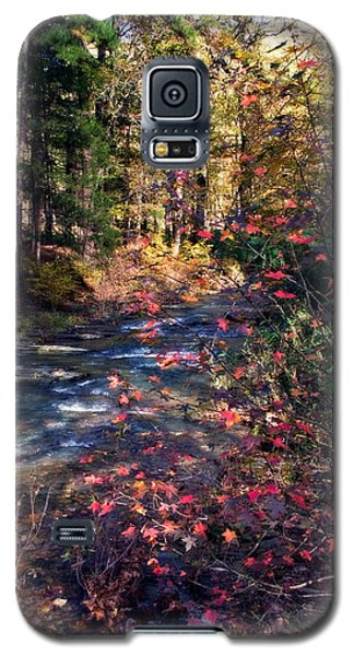 Beavers Bend Galaxy S5 Case
