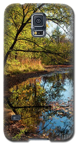 Galaxy S5 Case featuring the photograph Beaver's Pond by Iris Greenwell