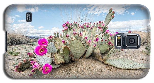 Beavertail Cactus Galaxy S5 Case