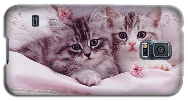 Bedtime Kitties Galaxy S5 Case