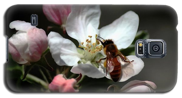 Bee And Blossom Galaxy S5 Case
