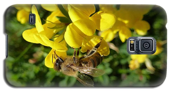 Bee And Broom In Bloom Galaxy S5 Case
