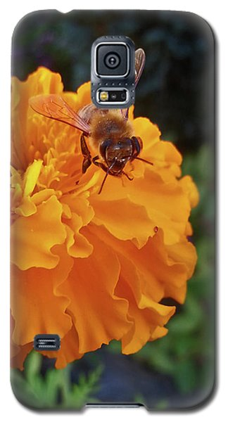 Bee And Marigold Galaxy S5 Case