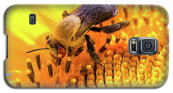 Bee And Sunflower Galaxy S5 Case