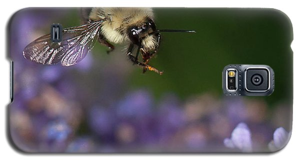 Bee Approaches Lavender Galaxy S5 Case