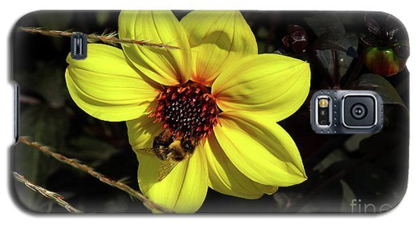 Bee At Work Galaxy S5 Case