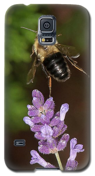 Bee Ballet Galaxy S5 Case