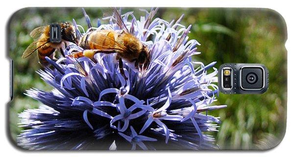 Bee Circles Galaxy S5 Case