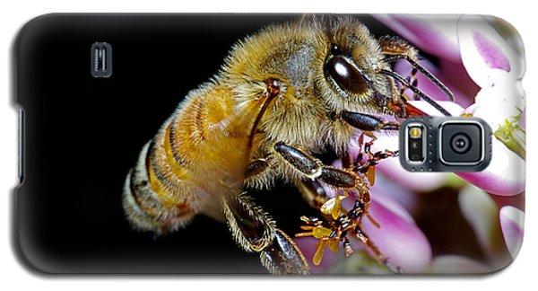 Bee Feeding Galaxy S5 Case