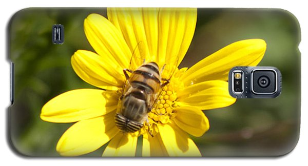 Bee Feeding Galaxy S5 Case