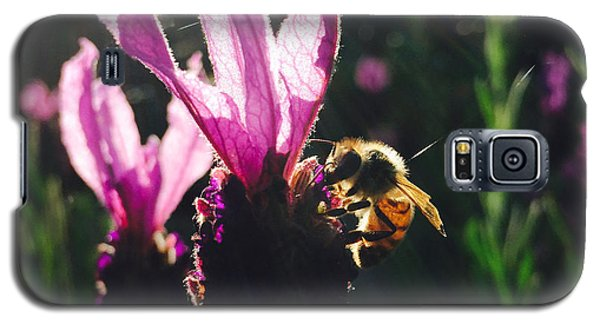 Bee Illuminated Galaxy S5 Case