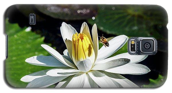 Bee In A Flower Galaxy S5 Case