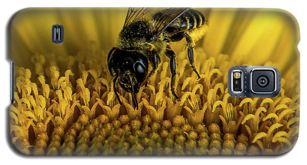 Galaxy S5 Case featuring the photograph Bee In A Sunflower by Paul Freidlund