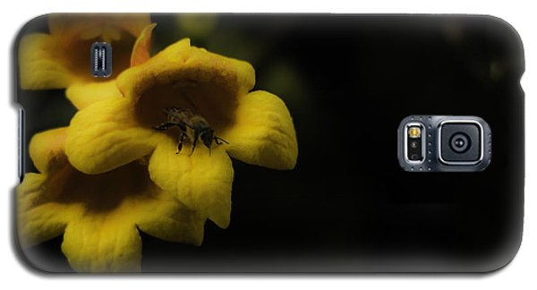 Bee In A Trumpet Galaxy S5 Case