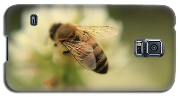 Bee Lives Matter Galaxy S5 Case