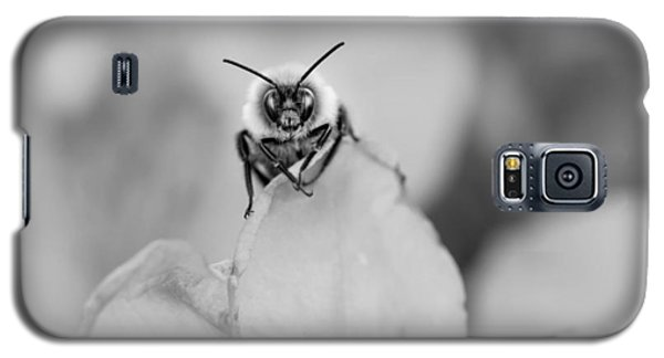 Bee Looking At Me Galaxy S5 Case