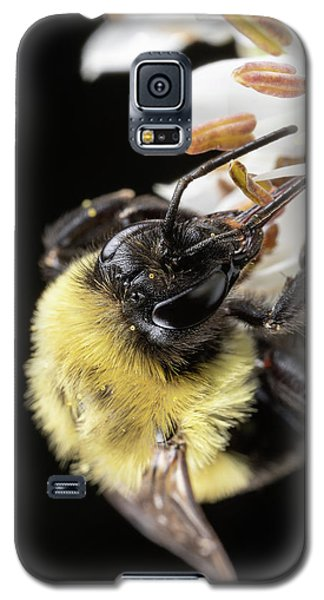 Bee Macro 1 Galaxy S5 Case