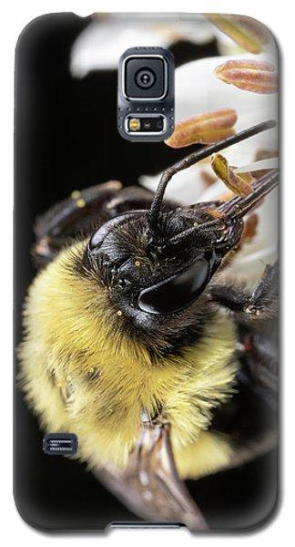 Bee Macro 1 Galaxy S5 Case