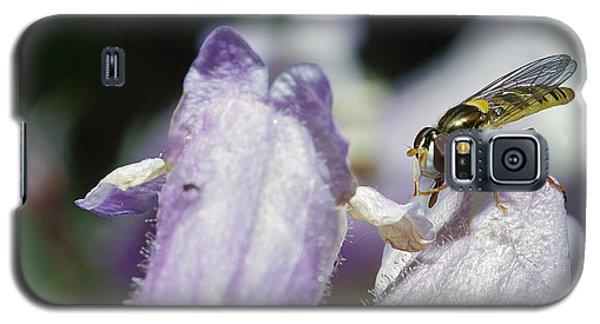 Bee Mimic On Iris Galaxy S5 Case