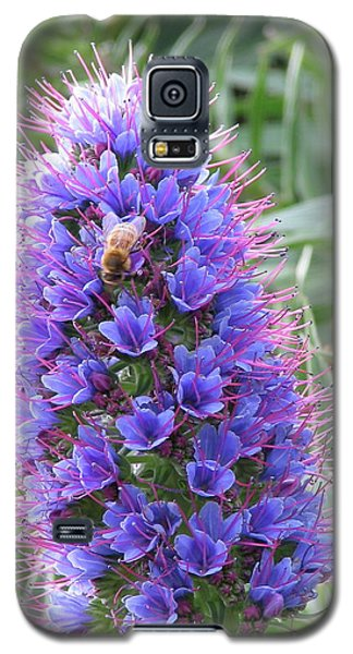 Bee On Blue Galaxy S5 Case
