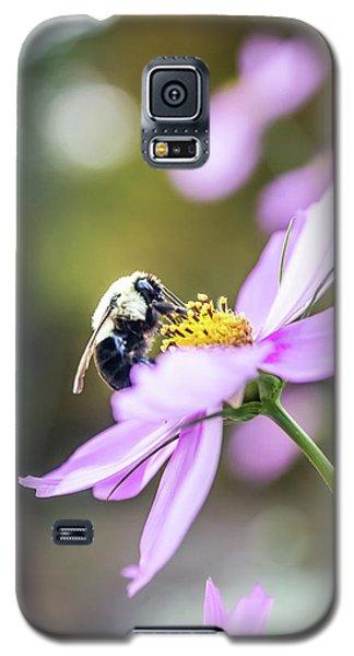 Bee On Flower Galaxy S5 Case