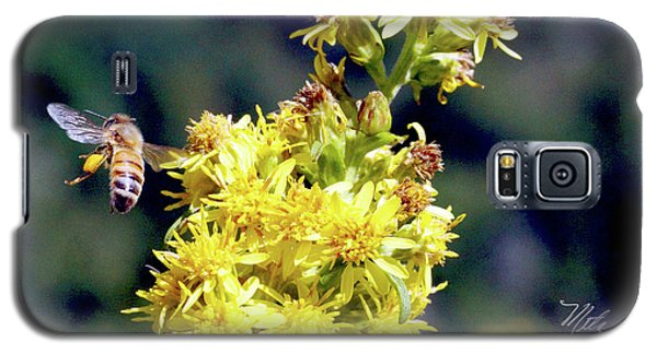 Bee On Goldenrod Galaxy S5 Case