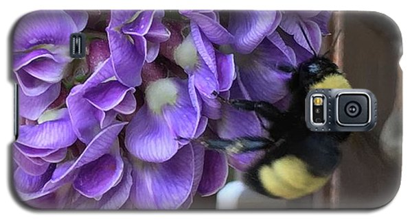 Bee On Native Wisteria Galaxy S5 Case by Angela Annas