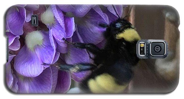 Galaxy S5 Case featuring the painting Bee On Native Wisteria I by Angela Annas