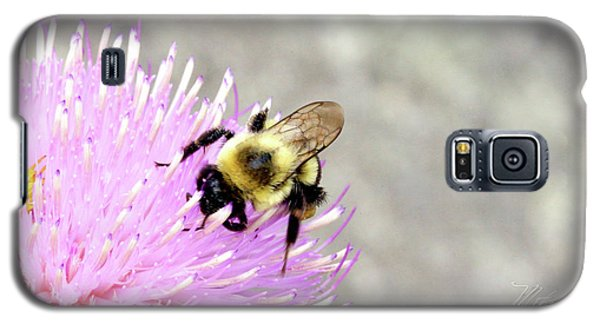 Galaxy S5 Case featuring the photograph Bee On Pink Bull Thistle by Meta Gatschenberger