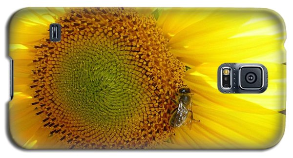 Galaxy S5 Case featuring the photograph Bee On Sunflower by Jean Bernard Roussilhe