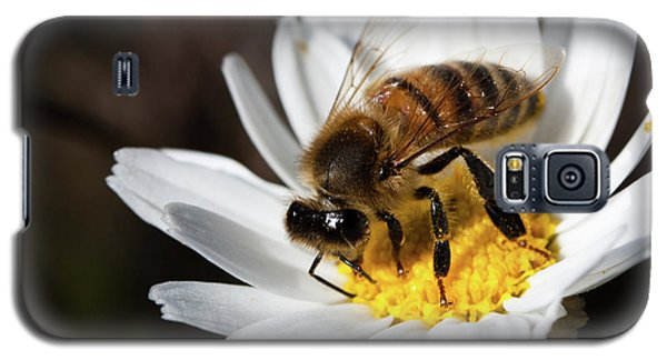 Bee On The Flower Galaxy S5 Case