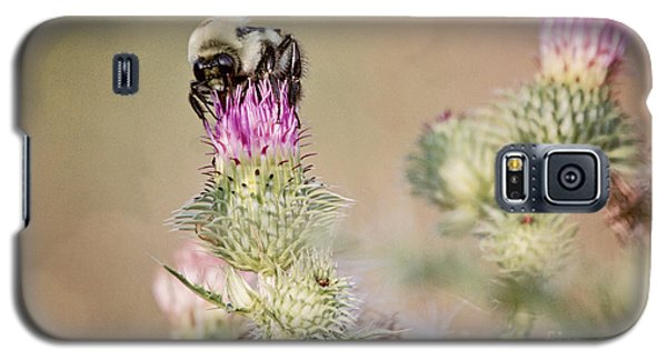 Bee On Thistle Weed Galaxy S5 Case by Laurinda Bowling