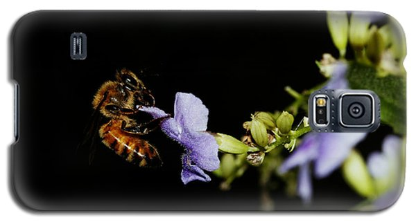 Bee Portrait Galaxy S5 Case