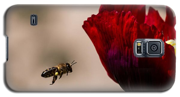 Bee Right Profile Flying To Red Flower Galaxy S5 Case
