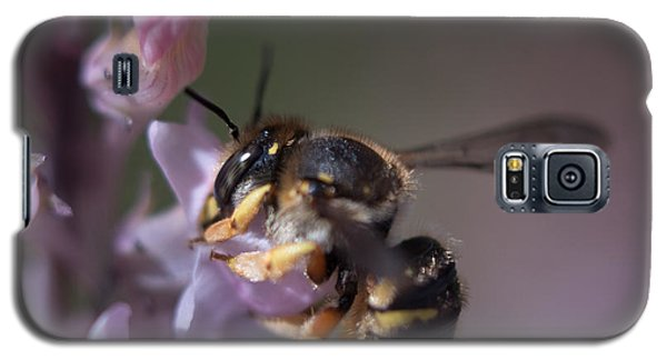 Bee Sipping Nectar Galaxy S5 Case