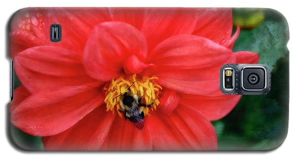 Galaxy S5 Case featuring the photograph Bee-utiful by Joan Bertucci