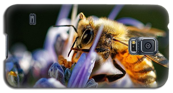 Bee Visits Rosemary  Galaxy S5 Case